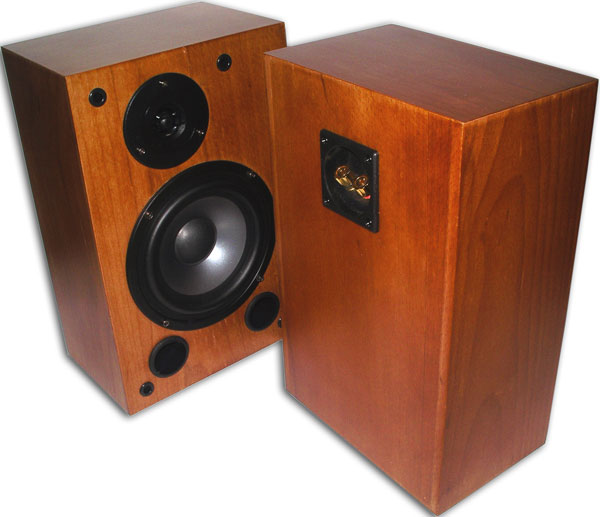 Trends Audio SA-10R speakers