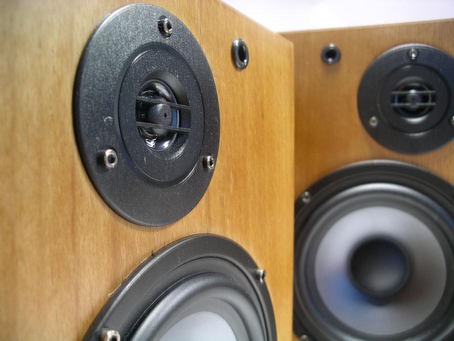 Trends Audio  SA-10R speakers tweeter up close