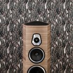 Sonetto-VIII-Wood_close-up