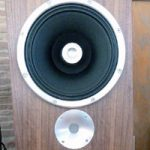 Zu Audio Omen Dirty Weekend speakers Review